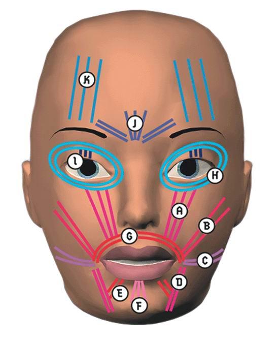 Моделирование головы часть 1